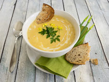 De soep van de Butternutpompoen Stock Foto