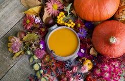 De soep van de de herfstpompoen met kleurrijke achtergrond stock foto's