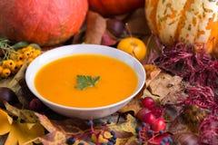 De soep van de de herfstpompoen in witte kom met kleurrijke achtergrond royalty-vrije stock foto's