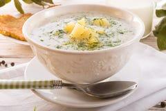 De soep van de dille stock afbeelding