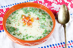 De soep van de kip Stock Afbeeldingen
