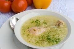 De soep van de kip met kippenbeen Royalty-vrije Stock Foto's