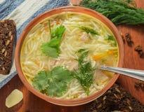 De soep van de kip met macaroni Stock Afbeelding