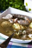 De soep van de kip met noedels royalty-vrije stock foto
