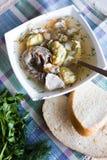 De soep van de kip met noedels stock foto's