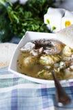 De soep van de kip met noedels royalty-vrije stock afbeeldingen