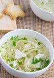 De soep van de kip met noedels en peterselie Royalty-vrije Stock Fotografie