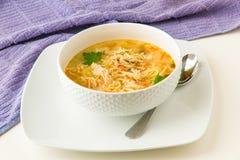 De soep van de kippennoedel royalty-vrije stock afbeelding
