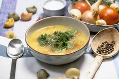 De soep van de kippennoedel met wortelen en peterselie Stock Afbeelding