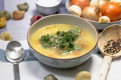 De soep van de kippennoedel met wortelen en peterselie Royalty-vrije Stock Afbeeldingen