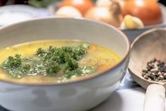 De soep van de kippennoedel met wortelen en peterselie Stock Afbeeldingen