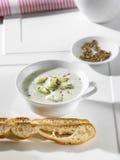 De soep van de komkommer Stock Fotografie