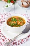 De soep van de kool Royalty-vrije Stock Foto