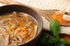De soep van de linze met kruiden en kruiden Royalty-vrije Stock Foto's
