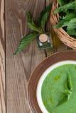 De soep van de netelroom stock foto's