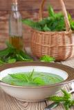 De soep van de netelroom stock afbeelding