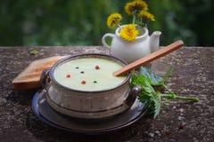 De soep van de netelroom met zwarte en Spaanse peper royalty-vrije stock afbeeldingen