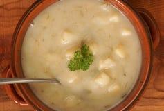 De soep van de prei en van de aardappel Stock Fotografie