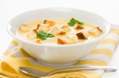 De soep van de prei, van de aardappel en van de selderie Stock Foto