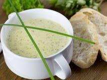 De soep van de preiroom stock afbeelding