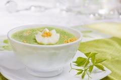 De soep van de spinazie Royalty-vrije Stock Afbeelding