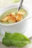 De soep van de spinazie met croutons royalty-vrije stock foto's