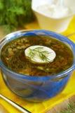 De soep van de spinazie met eieren Royalty-vrije Stock Afbeelding