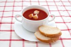 De soep van de tomaat met croutons Royalty-vrije Stock Foto