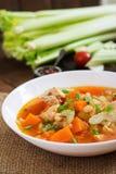 De soep van de tomatenkip met pompoen Royalty-vrije Stock Afbeelding