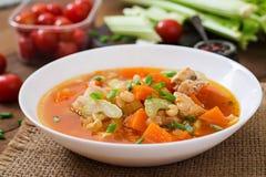 De soep van de tomatenkip met pompoen Stock Afbeeldingen