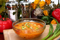 De Soep van de Tortilla van de kip royalty-vrije stock foto's
