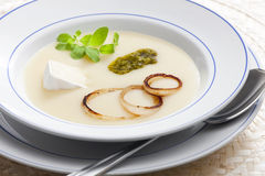 De soep van de ui royalty-vrije stock fotografie