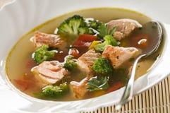 De soep van de zalm Stock Fotografie