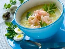 De soep van garnalen royalty-vrije stock foto