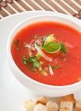 De soep van Gazpacho Royalty-vrije Stock Afbeelding
