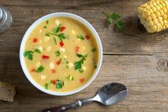 De Soep van de graanvissoep royalty-vrije stock fotografie