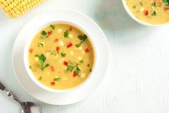 De Soep van de graanvissoep royalty-vrije stock afbeeldingen