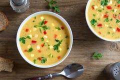 De Soep van de graanvissoep royalty-vrije stock foto's