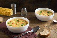 De Soep van de graanvissoep royalty-vrije stock foto