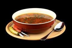 De soep van het rundvlees Stock Foto
