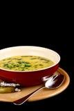 De soep van het rundvlees Stock Afbeeldingen