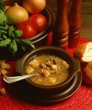 De soep van het rundvlees Royalty-vrije Stock Foto's
