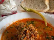 De soep van het varkensvleesbeen met zure room en ingelegde peper Stock Fotografie