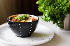 De soep van het vlees royalty-vrije stock afbeelding