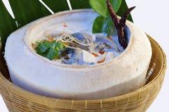 De soep van de kippenkokosnoot in kokosnoot royalty-vrije stock foto