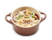 De soep van de kippennoedel in pot royalty-vrije stock fotografie