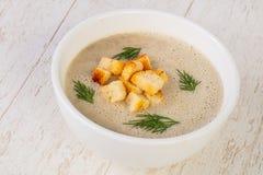 De soep van de Mashroomroom stock fotografie