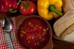De soep van de peper Stock Fotografie