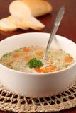 De soep van Turkije of van de kip Stock Afbeeldingen