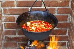 De soep van vissen Stock Afbeelding
